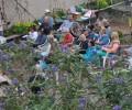 Learn gardening tips from Lauren Fieberg