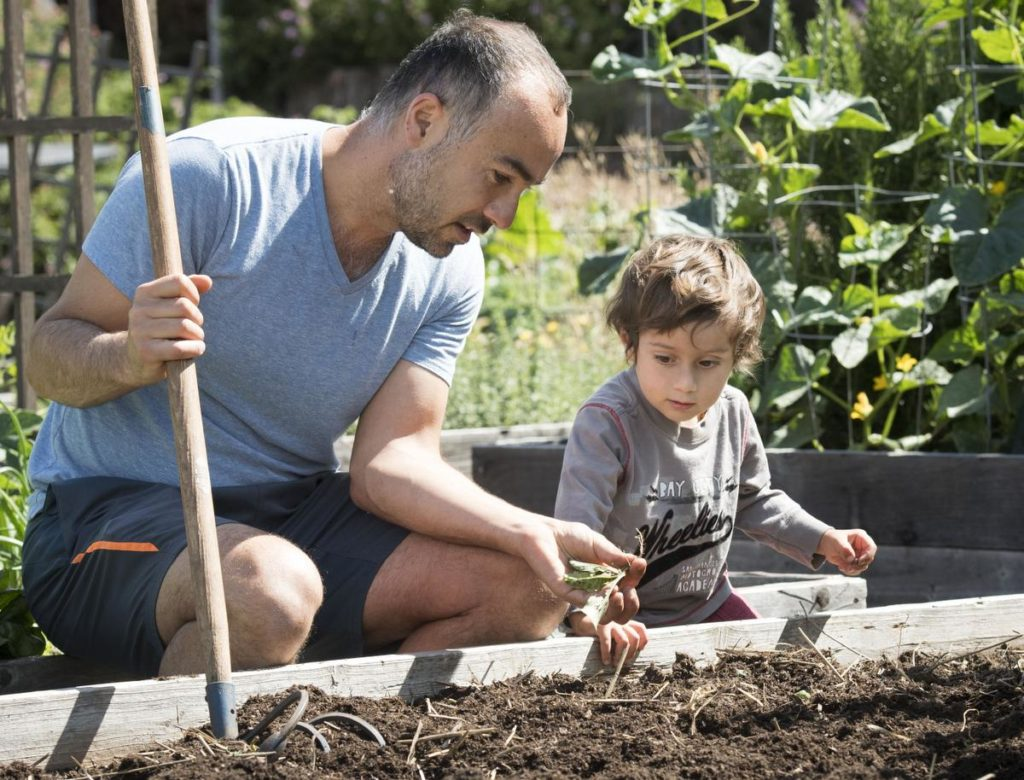 Laguna Beach resident Ramin Pejan, 39, along with his son, Kaiaan (cq) , 2 1/2, look over various plants and seeds they have just pulled form their garden plot.<br /> ///PHOTO BY DAVID BRO, CONTRIBUTING PHOTOGRAPHER.