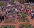 South Laguna Community Garden