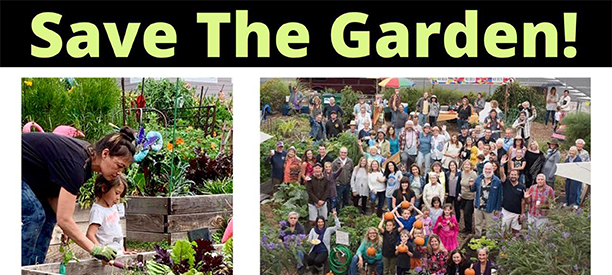 Save The Garden! (10).png